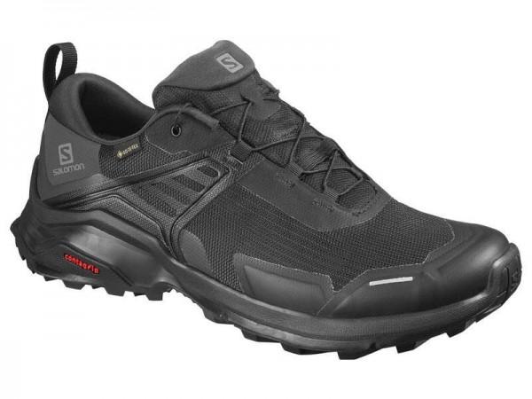 Salomon Schuhe X RAISE GTX Black/Black/PHAN